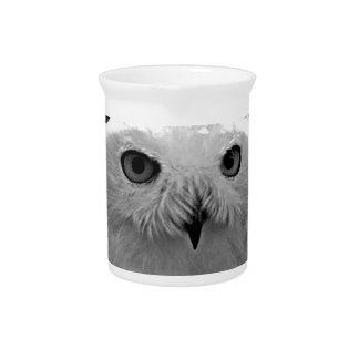 Colección del regalo del búho Nevado Jarras Para Bebida