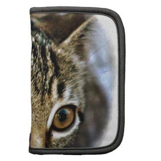 Colección del regalo del gatito del bebé de organizadores