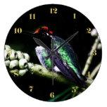 Colección del regreso al hogar del colibrí reloj
