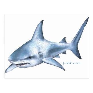 Colección del tiburón por FishTs.com Postal