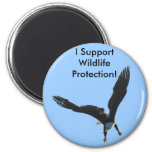 Colección del vuelo de Eagle calvo Imán Para Frigorifico