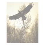 Colección fresca de la fauna de Eagle calvo Plantillas De Membrete