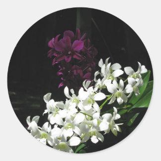 Colección hawaiana de la flor pegatina redonda