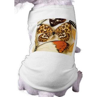 Colección hermosa de la mariposa ropa de mascota
