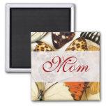 Colección hermosa de la mariposa imán para frigorífico