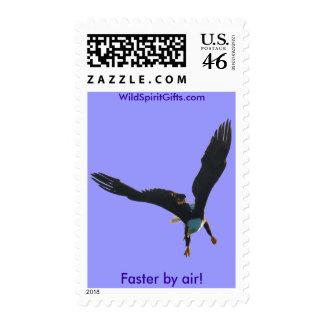 Colección II del vuelo de Eagle calvo