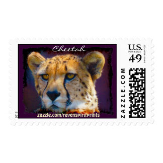 Colección postal africana del gato grande del envio
