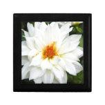 Colección preciosa de la señora flor blanca caja de recuerdo