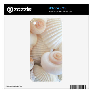 Colección soleada de los Seashells del verano Skin Para El iPhone 4