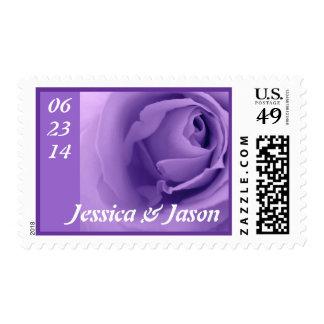Colección superior color de rosa púrpura soñadora sello
