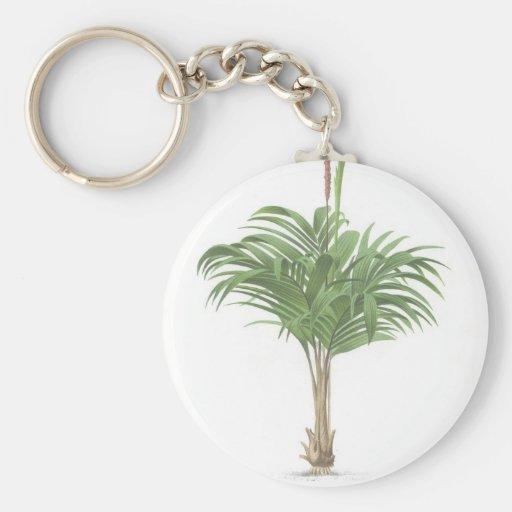 Colección tropical de la palma - imagen 2 llavero redondo tipo pin