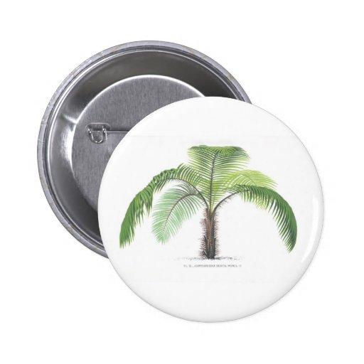colección tropical de la palmera - dibujo VI Pin