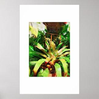 Colección tropical de la pintura al óleo de Bromel Posters