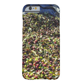 Colección verde oliva funda barely there iPhone 6