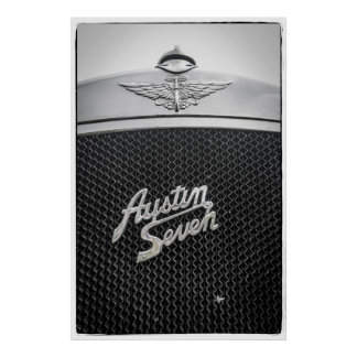 Colector de la mosca de Austin siete Póster