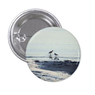 Colector de ostra y botón del zarapito pin