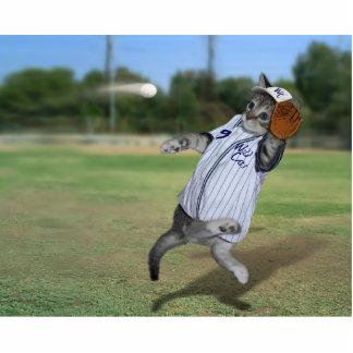 ¡Colector del gato en el campo abierto! Fotoescultura Vertical