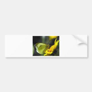 colector verde de las mariposas pegatina para auto