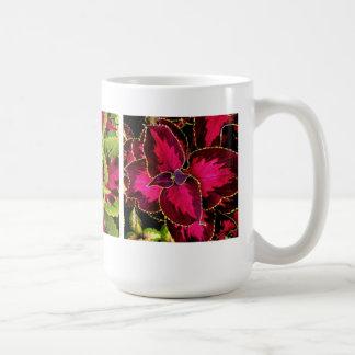 Coleo colorido taza
