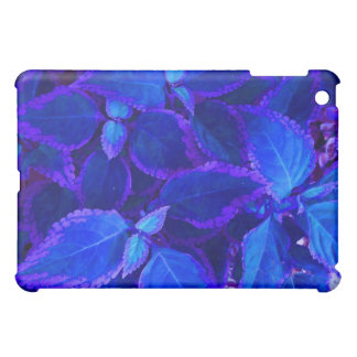Coleo colorized azul de la planta