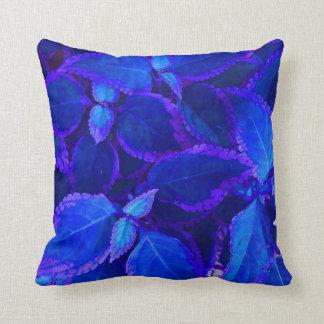 Coleo colorized azul de la planta cojines