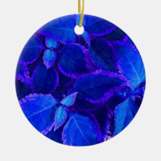 Coleo colorized azul de la planta adorno redondo de cerámica