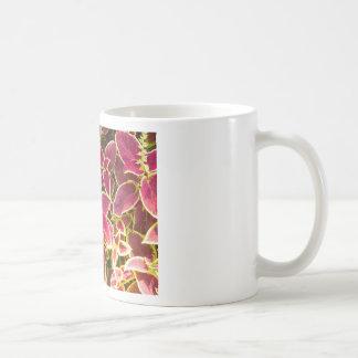 Coleo rojo decorativo taza