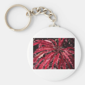 coleo rojo llavero redondo tipo pin