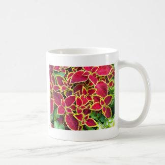 Coleo rojo y amarillo decorativo taza clásica