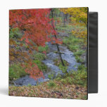 Coles Creek lined with autumn maple trees near Vinyl Binders