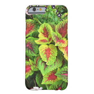 coleus barely there iPhone 6 case