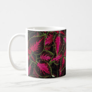 coleus coffee mug
