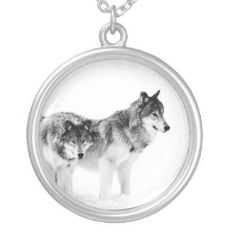 Colgante de la foto del lobo. Lobos blancos y