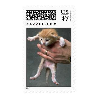 Colgante hacia fuera timbre postal