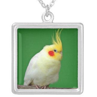 Colgante hermoso de la foto del pájaro del Cockati