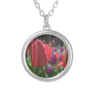 Colgantes de los tulipanes del día lluvioso