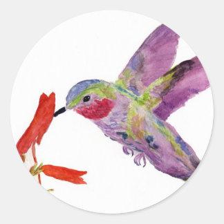 colibrí 1 pegatina redonda
