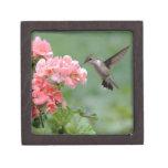 colibrí 2.jpg cajas de joyas de calidad