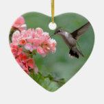 colibrí 2.jpg ornaments para arbol de navidad