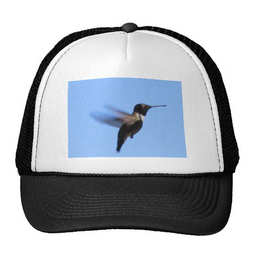 colibrí 2J2 en vuelo en un cielo azul Gorro De Camionero