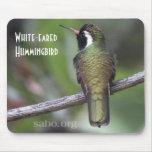 colibrí Blanco-espigado Mousepad Alfombrillas De Ratón