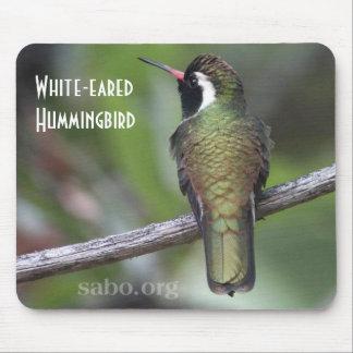 colibrí Blanco-espigado Mousepad