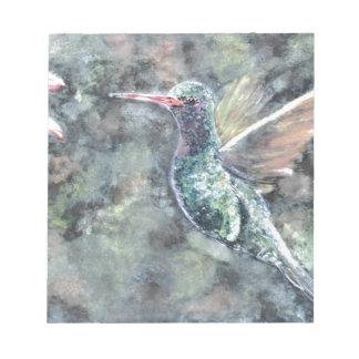 colibrí blocs de papel