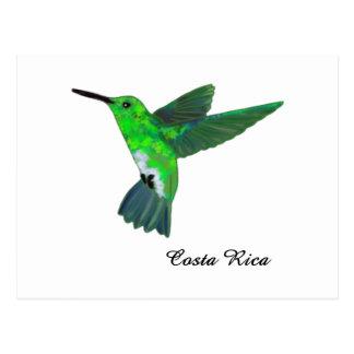 Colibrí de Costa Rica Tarjetas Postales