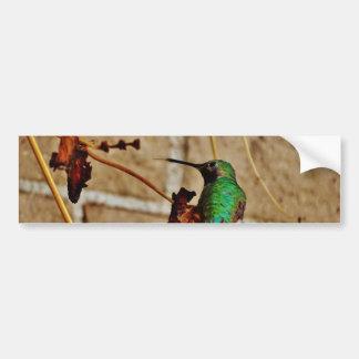 colibrí de rubíes verde pegatina para auto