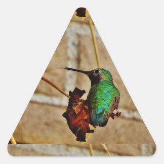 colibrí de rubíes verde pegatina triangular