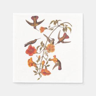 Colibrí del mangle con las flores anaranjadas servilletas de papel