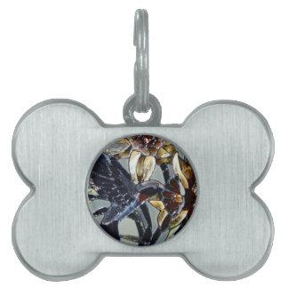 Colibrí del vidrio de la mancha placas de nombre de mascota