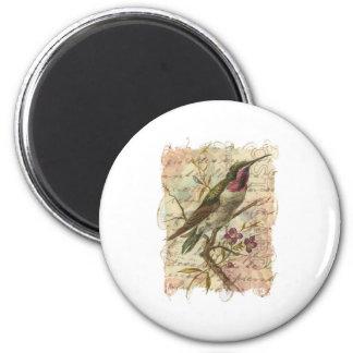 Colibrí del vintage imán redondo 5 cm