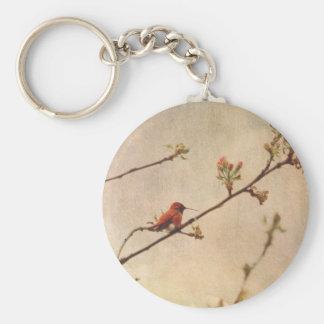 Colibrí en cerezo floreciente llavero personalizado